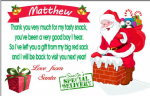 PVC Plastic Santa Special Delivery Visiting Card